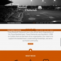 Texas Baseball Diamonds WordPress Web Design